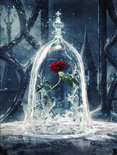 s-『Disney 美女と野獣』ポスター02.jpg