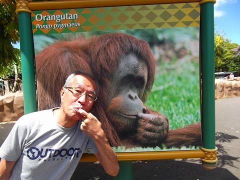 s-ハワイ ホノルル動物園.jpg