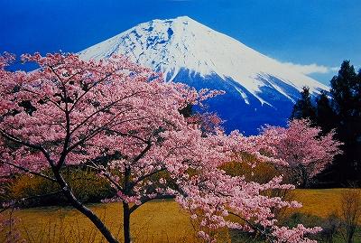 s-富士山・春.jpg