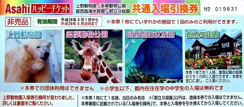 s-旧古河庭園・チケット01.jpg