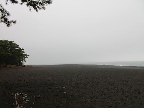 s-雨の三保の松原.jpg