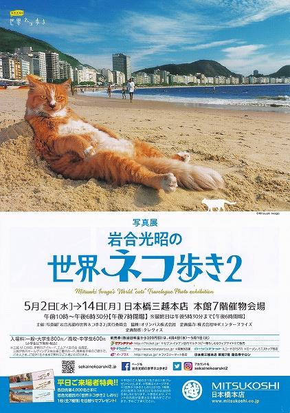 s-『世界ネコ歩き2』チラシ表.jpg